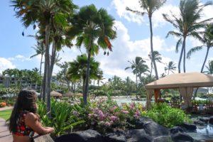 Ultimate Kauai Travel Guide Top Photo